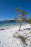 Mckenzie Lake, Fraser Island, UNESCO World Heritage Site, Queensland, Australia, Pacific Photographic Print by Michael Runkel