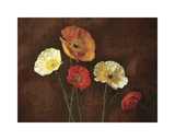 Poppy Perfection I Giclee Print by Janel Pahl