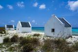 Slave Huts in Bonaire, ABC Islands, Netherlands Antilles, Caribbean, Central America Reproduction photographique par Michael Runkel