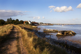 Track by the River at Orford Quay, Orford, Suffolk, England, United Kingdom, Europe Photographic Print by Mark Sunderland