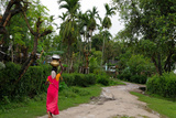 Woman Carrying Water, Assam, India, Asia Photographic Print by Bhaskar Krishnamurthy