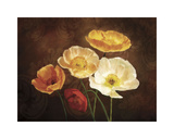 Poppy Perfection II Giclee Print by Janel Pahl