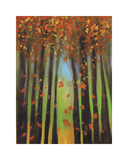 Colors of Fall II Giclee Print by Mark Pulliam