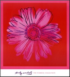 Daisy, c.1982 (Crimson and Pink) Mounted Print by Andy Warhol