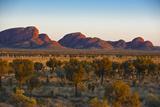 The Olgas (Kata Tjuta), Uluru-Kata Tjuta Nat'l Park, UNESCO Site, Northern Territory, Australia Photographic Print by Michael Runkel