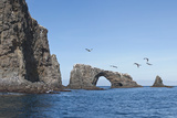 Anacapa Arch with Birds, Channel Islands National Park, California, United States of America Photographic Print by Antonio Busiello