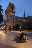 Notre Dame Cathedral at Night, Paris, France, Europe Photographic Print by  Godong