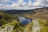 Glen Trool, Seen from White Bennan, Dumfries and Galloway, Scotland, United Kingdom, Europe Fotografisk tryk af Gary Cook
