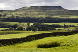 Addlebrough from Askrigg in Wensleydale, Yorkshire Dales, North Yorkshire, Yorkshire, England, UK Photographic Print by Mark Sunderland