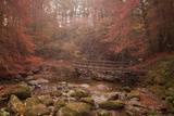 Misty Autumn Valley Near Ambleside, Lake District National Park, Cumbria, England, United Kingdom Photographic Print by Ian Egner