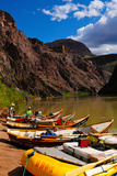 Dory Moored Along the Colorado River, Colorado, United States of America, North America Photographic Print by Bhaskar Krishnamurthy