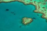 Aerial of the Great Barrier Reef, UNESCO World Heritage Site, Queensland, Australia, Pacific Fotografisk trykk av Michael Runkel