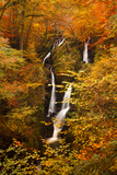 Stock Ghyll Force Waterfall in Autumn, Lake District National Park, Cumbria, England, UK Photographic Print by Ian Egner