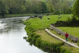 Countryside, County Kilkenny, Leinster, Republic of Ireland (Eire), Europe Papier Photo par Nico Tondini