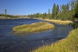 Madison River Valley Near Madison, Yellowstone Nat'l Park, UNESCO World Heritage Site, Wyoming, USA Photographic Print by Peter Barritt