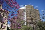 Niemeyer Building, Belo Horizonte, Minas Gerais, Brazil, South America Photographic Print by Ian Trower