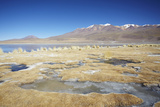 Landscape of Laguna Canapa on Altiplano, Potosi Department, Bolivia, South America Photographic Print by Ian Trower