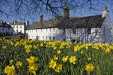Gary Cook - Kirkcudbright, Dumfries and Galloway, Scotland, United Kingdom, Europe - Fotografik Baskı