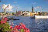 City Skyline and Flowers, Stockholm, Sweden, Scandinavia, Europe Fotografie-Druck von Frank Fell