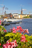 City Skyline and Flowers, Stockholm, Sweden, Scandinavia, Europe Photographic Print by Frank Fell