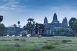 Temple Complex of Angkor Wat, Angkor, UNESCO World Heritage Site, Siem Reap, Cambodia, Indochina Photographic Print by Andrew Stewart