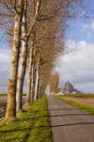 A Tree Lined Avenue Leads Towards Mont Saint Michel, UNESCO World Heritage Site, Normandy, France Photographic Print by Julian Elliott