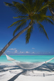 Hammock on Tropical Beach, Maldives, Indian Ocean, Asia Lámina fotográfica por Sakis Papadopoulos