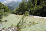 Upper Soca River, Mt Razor, Willow Bushes, Julian Alps, Triglav Nat'l Pk, Slovenia, Europe Photographic Print by Nick Upton