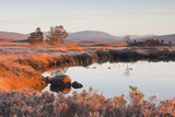 Loch Ba on a Frosty Morning at Rannoch Moor, Perth and Kinross, Highlands, Scotland, UK Photographic Print by Julian Elliott