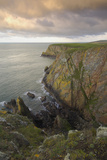 Mull of Galloway, Rhins of Galloway, Dumfries and Galloway, Scotland, UK Photographic Print by Gary Cook