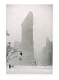 Flatiron Buzzard - New York Poster af Henri Silberman