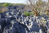 Tsingy de Bemaraha Strict Nature Reserve, UNESCO Site, Melaky Region, Madagascar Photographic Print by J P De Manne
