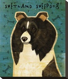 Shetland Sheepdog (Black & White) Stretched Canvas Print by Golden John W.