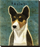Basenji (Tri-Color) Stretched Canvas Print by John Golden