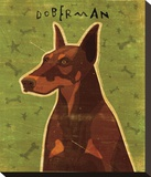 Doberman (Red) Stretched Canvas Print by John Golden