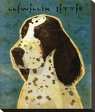 Llewellin Setter Stretched Canvas Print by John W. Golden