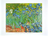 Iris Garden Print by Vincent van Gogh