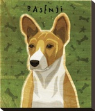 Basenji (Red) Stretched Canvas Print by John Golden
