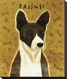 Basenji (Black) Stretched Canvas Print by John Golden