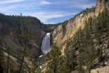 Lower Falls from Red Rock Point, Yellowstone Nat'l Pk, UNESCO Site, Wyoming, USA Photographic Print by Peter Barritt