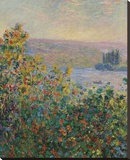 Flower Beds at Vetheuil, 1881 Stretched Canvas Print by Monet Claude