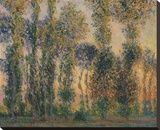 Poplars at Giverny, Sunrise, 1888 Stretched Canvas Print by Monet Claude