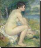 Nude in a Landscape, 1883 Stretched Canvas Print by Renoir Pierre-Auguste