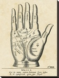 Palmistry: Palm Diagram Stretched Canvas Print by Unknown Unknown