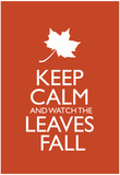 Keep Calm and Watch the Leaves Fall Poster Photo