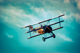 Fokker Dr1 in Flight Photographic Print by David Bracher