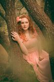 Delicate Rose Photographic Print by Nadja Berberovic