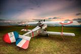 David Bracher - Nieuport 17 - Fotografik Baskı