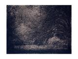 Inner Life Giclée-Druck von Petr Strnad