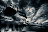 Submerged Photographic Print by David Bracher